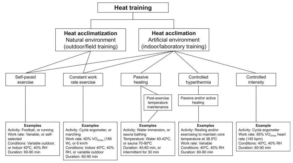 medium resolution of julien p riard on twitter schematic overview of methods for heat acclimation and heat acclimatization https t co jg35e2eksd