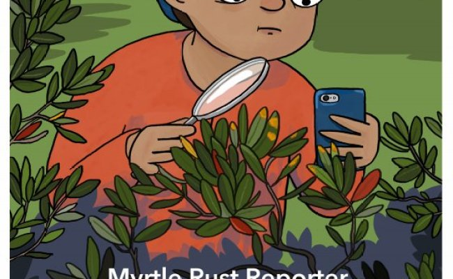 Stuart Fraser On Twitter Check Out The New Myrtle Rust
