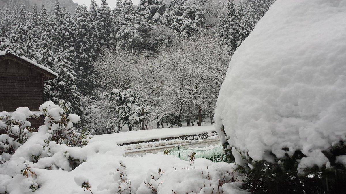 test ツイッターメディア - ほんまに田舎です。静かな夜はシンシンと雪が積もったり。明日も早起きしないとアカンな。これは今朝の風景  明日に備えて風呂で温もって寝よ https://t.co/kPbOWzj7GE