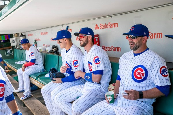 20 Happy Birthday Cubs Meme Pictures And Ideas On Meta Networks
