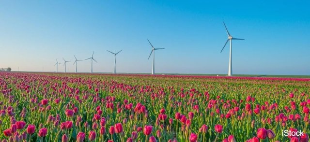 test Twitter Media - Waarom windmolens helemaal niet zo duurzaam zijn  📰 @trouw 👉 https://t.co/HxLBdUl2Om https://t.co/X6j39KXpuG