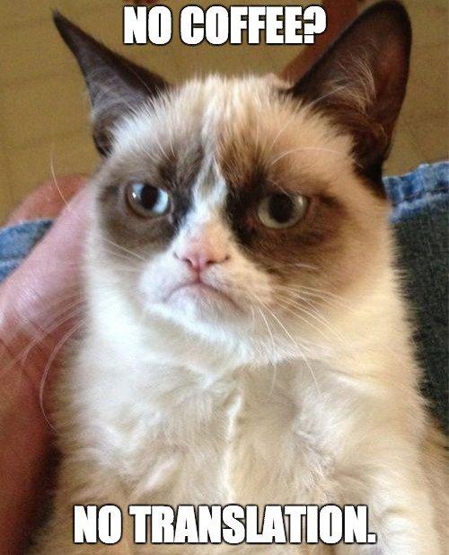 No Coffee Meme : coffee, MotaWord, Twitter:, Coffee?, Translation., (feat., @RealGrumpyCat), #Translation…