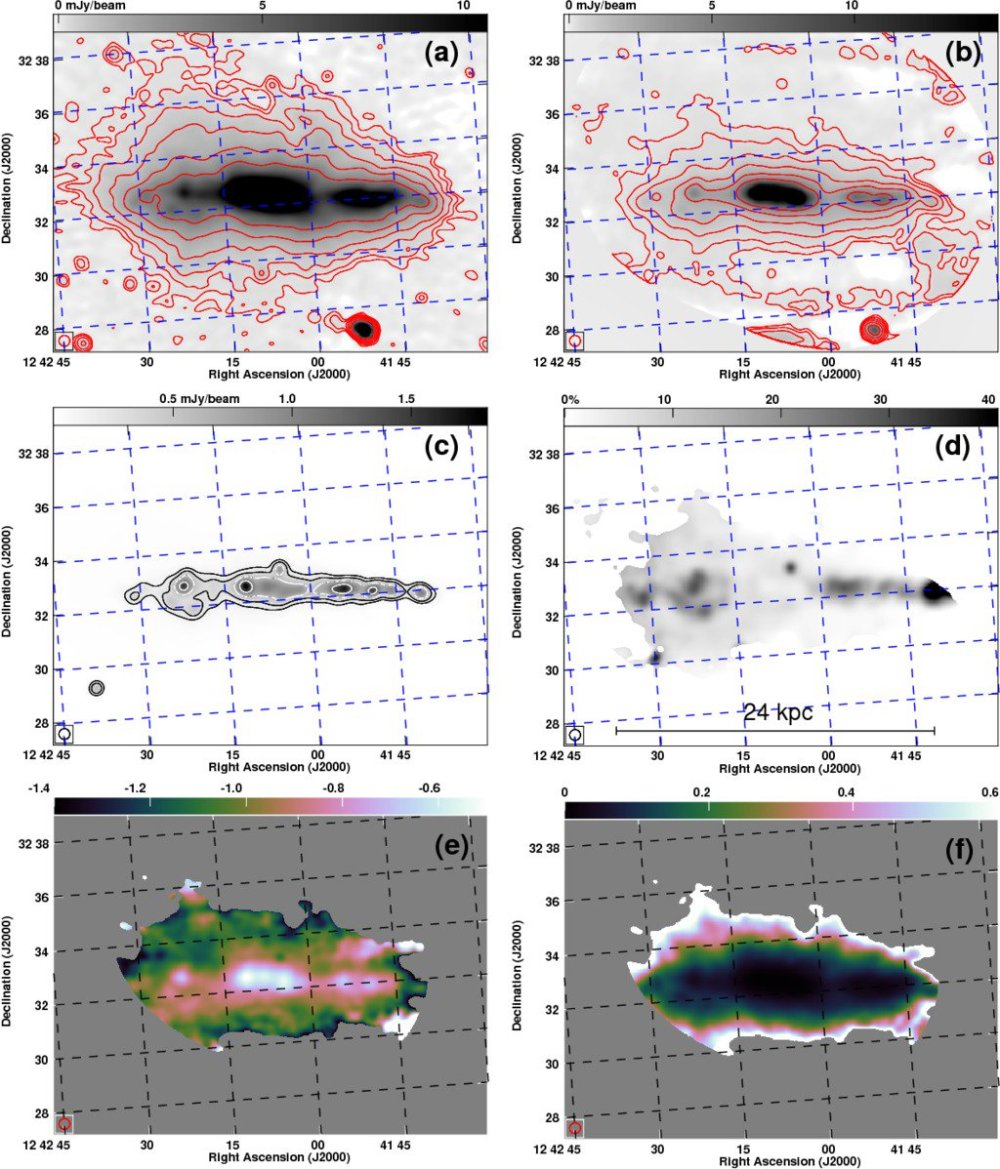 medium resolution of radio haloes in nearby galaxies modelled with 1d cosmic ray transport using spinnaker ga
