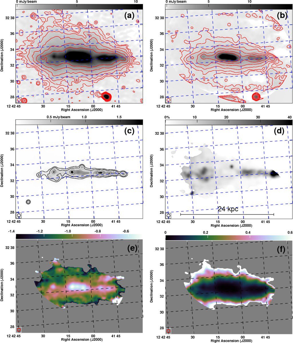 hight resolution of radio haloes in nearby galaxies modelled with 1d cosmic ray transport using spinnaker ga