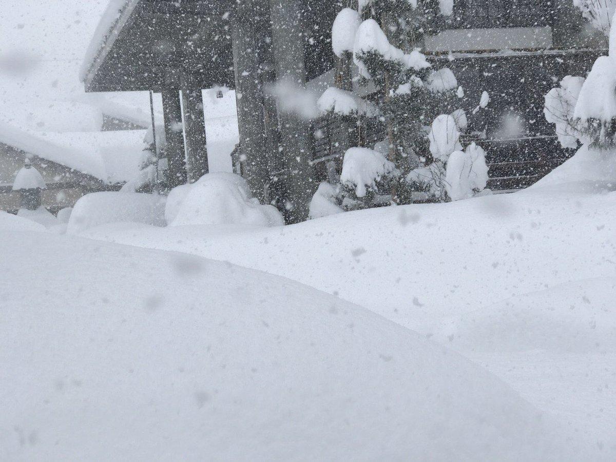 test ツイッターメディア - 福井県の本領発揮か。五六豪雪以来37年ぶりの大雪だそうで。 https://t.co/CGhKLRXlhe