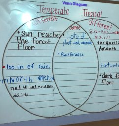 comparing and contrasting temperate and tropical rain forests during reading ceslead studentownership https t co twfcryeeit  [ 1200 x 900 Pixel ]