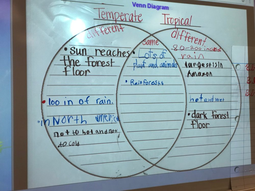 medium resolution of comparing and contrasting temperate and tropical rain forests during reading ceslead studentownership https t co twfcryeeit