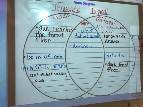 small resolution of comparing and contrasting temperate and tropical rain forests during reading ceslead studentownership https t co twfcryeeit