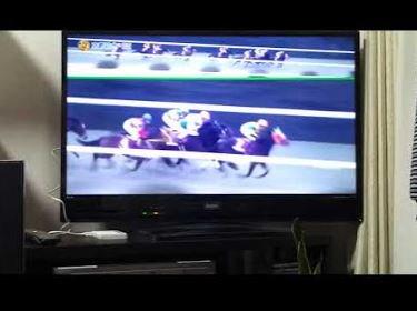 test ツイッターメディア - 競馬動画: 2018京都記念 GⅡ クリンチャーV 次の目標はGⅠ初勝利 https://t.co/U133C5gmRm … https://t.co/saglwGUz95