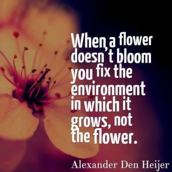 "Image result for ""when a flower doesn't bloom"" @gcouros"