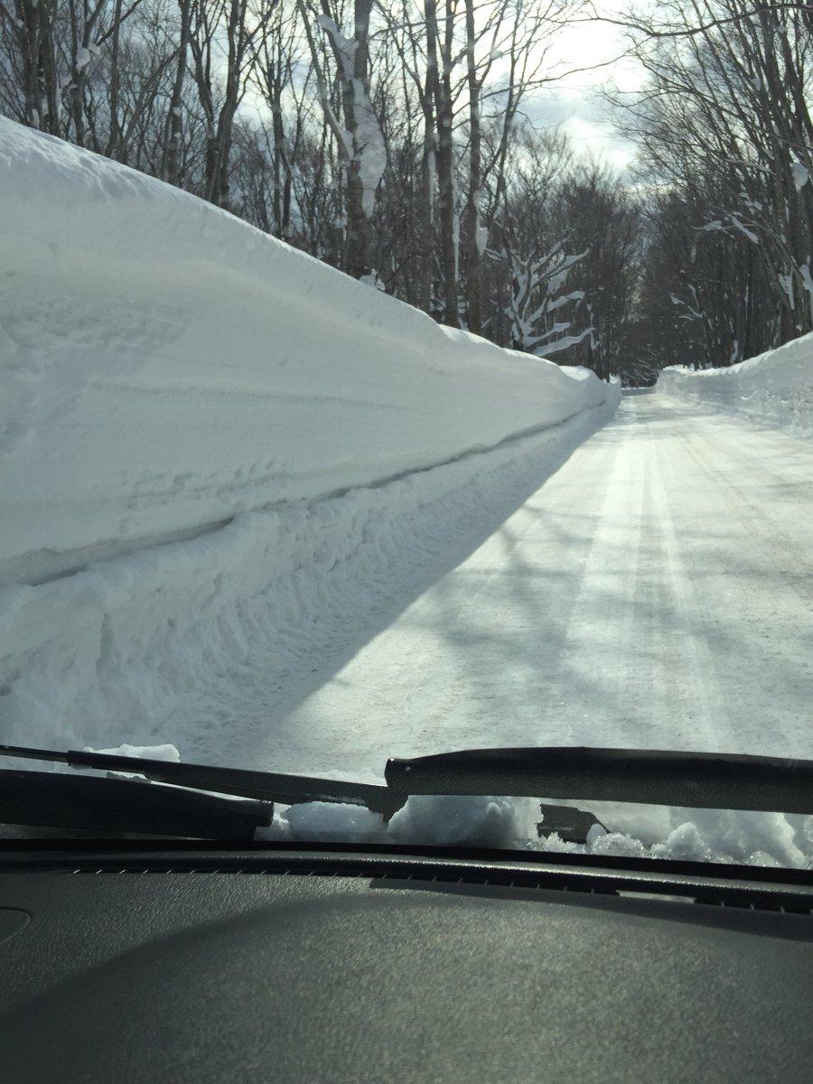 test ツイッターメディア - @hapimoni 小谷大佐、おはようございます!今朝の青森は穏やかな天気ですが、道路脇の雪は3mくらいありますよー!こんな日は爽やかな小谷大佐の笑顔と声、そしていい歌に酔いしれたいです!リクエスト曲は菅田将暉で『さよならエレジー』 https://t.co/BwGziNbiqX