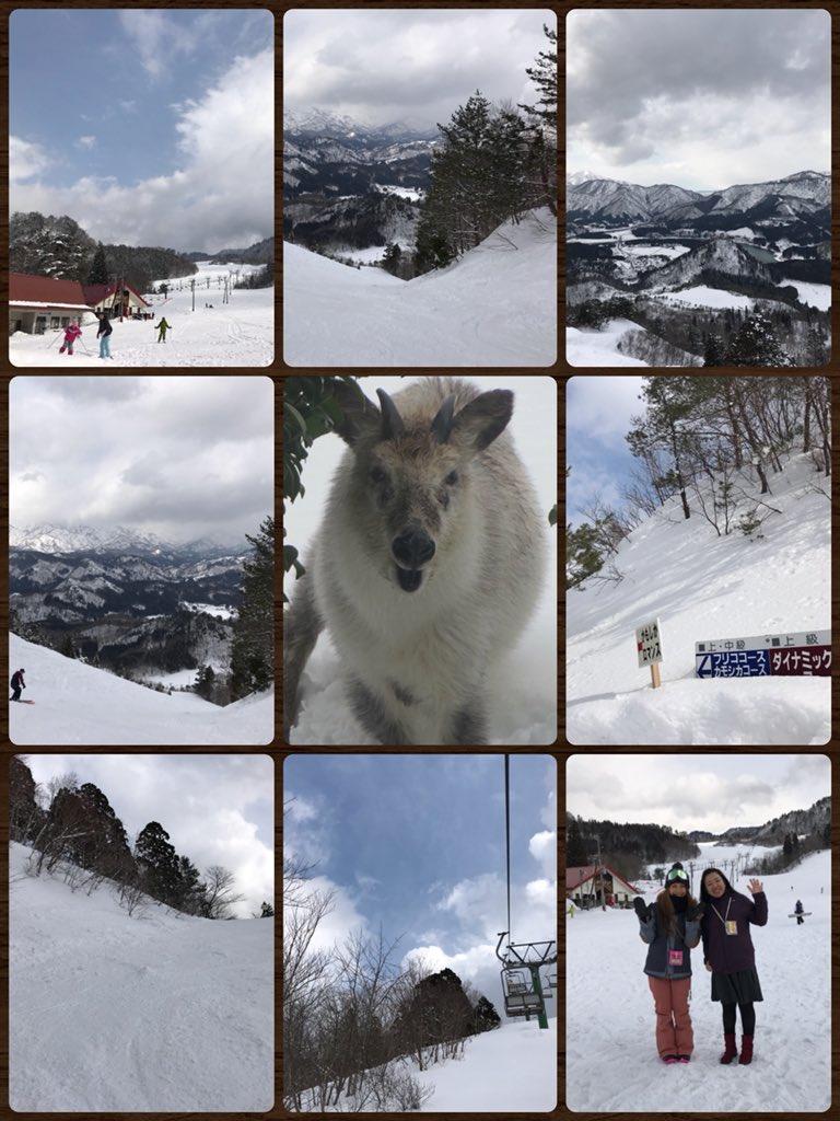 test ツイッターメディア - 今日金曜は LOVE SNOWでした⛄️❄️  先日体験取材でおじゃました 阿賀町/三川温泉スキー場  そして日帰りツアーの 開催が決定した福島県 グランデコスノーリゾート についてお届けしました(o^^o)  グランデコ日帰りツアーは LOVE SNOWが スタートしてお初です^_^♡  参加費 4,000円です🤗🌼 https://t.co/xxcfYw2oNn