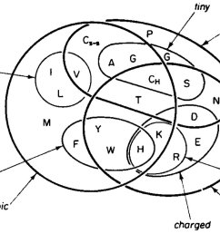 check out this awesome venn diagram of amino acid properties from a classic paper the amino acids closer together exchange frequently  [ 1200 x 797 Pixel ]