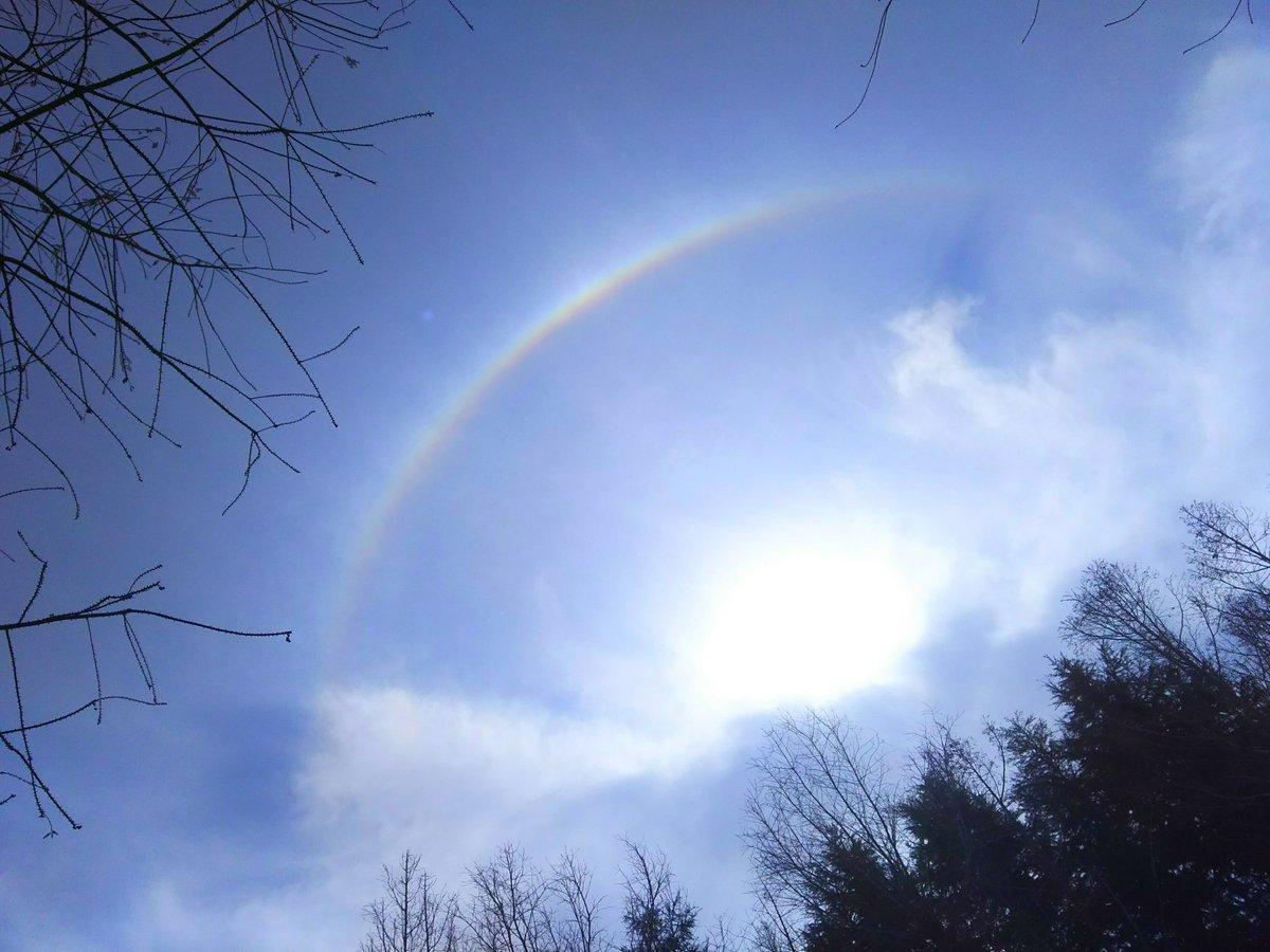 test ツイッターメディア - @0220nicole キモうま楽しみすぎる😍 てか、にこるん晴れなのに太陽の周りに虹が出てるよ🌈 https://t.co/mQ5qSqrTCE