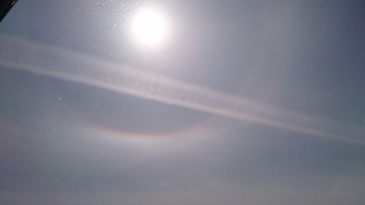 test ツイッターメディア - 太陽の周りに虹みたいなものが。 https://t.co/BtOsosC5q4