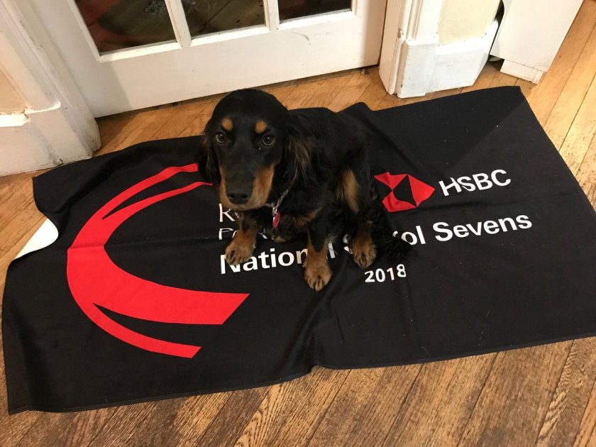 "If you or ""any"" member of your family would still like a towel from the event, they are available from our online shop https://t.co/o5Ne0jOXY2 #rpns7s #clubtowels"