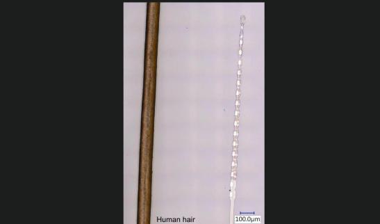Comparación del grosor del pelo humano vs uno de los hilos.