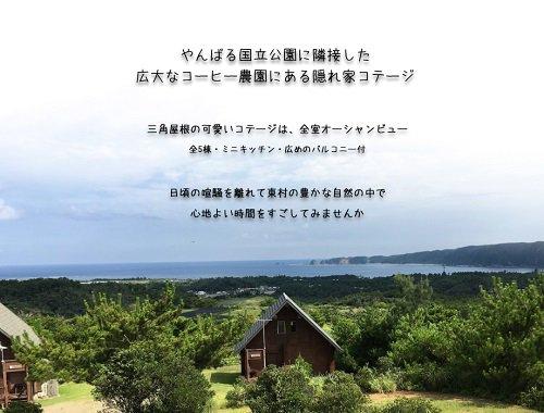 test ツイッターメディア - 【沖縄県東村】 沖縄に「国産コーヒー豆」の産地があるって知ってました?広大な園内にはコテージもある「又吉コーヒー園」。 https://t.co/iBxV9Z55O3  https://t.co/aeAT66Szmo