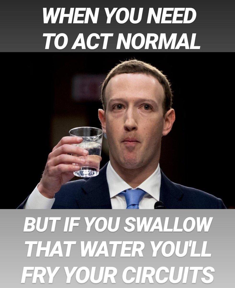 Mark Zuckerberg Memes ZuckerbergMemes  Twitter