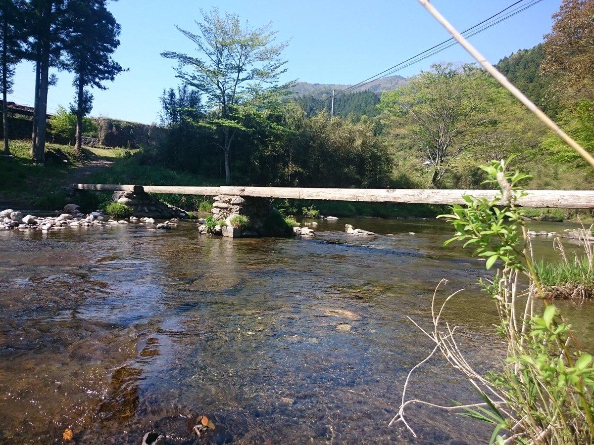 test ツイッターメディア - つぎの目的地は 早瀬の一本橋 この橋は沈下橋の原形とも言われる橋で増水すると流されます(ワイヤーで係留されて完全に流されることはない)増水した水が引いた後に人力で掛け直すという橋です。 観光用の橋ではなく生活用の橋というのがまたすごいですね(*´∇`*) https://t.co/jCz3PklWpa