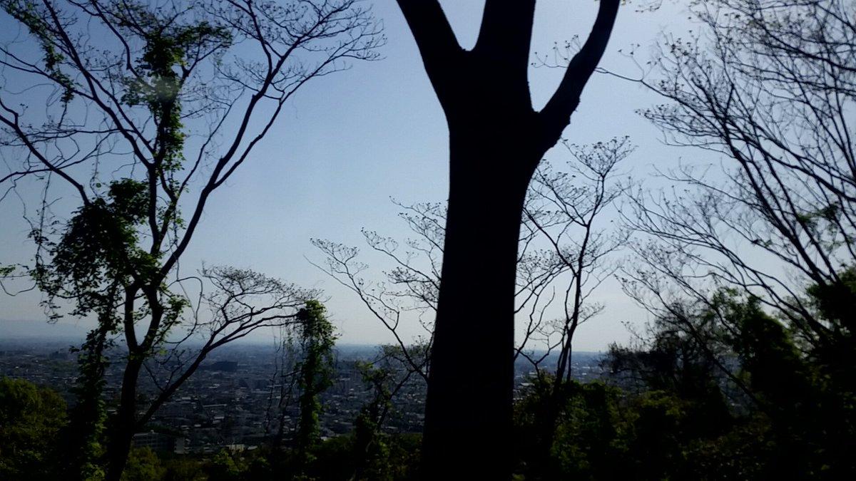 test ツイッターメディア - 阪奈道路から見る大阪市内は、いつもよりも綺麗に見れました。 https://t.co/vJbHdBdwLV