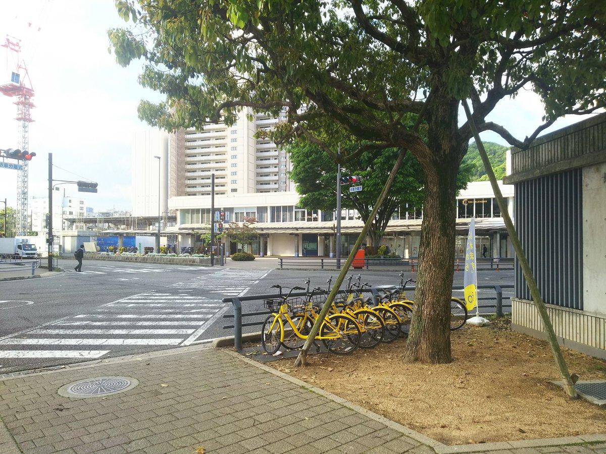 test ツイッターメディア - 琵琶湖線の大津駅前にずらっと自転車が並んでいたのは、自転車シェアリング用だったのか。これから季節も良いので使い道はいろいろありそう。街路樹の下、屋外に止めてあるから、サドルを拭くなんかは持っていったほうが良さそうですね https://t.co/qRP8JizZWp