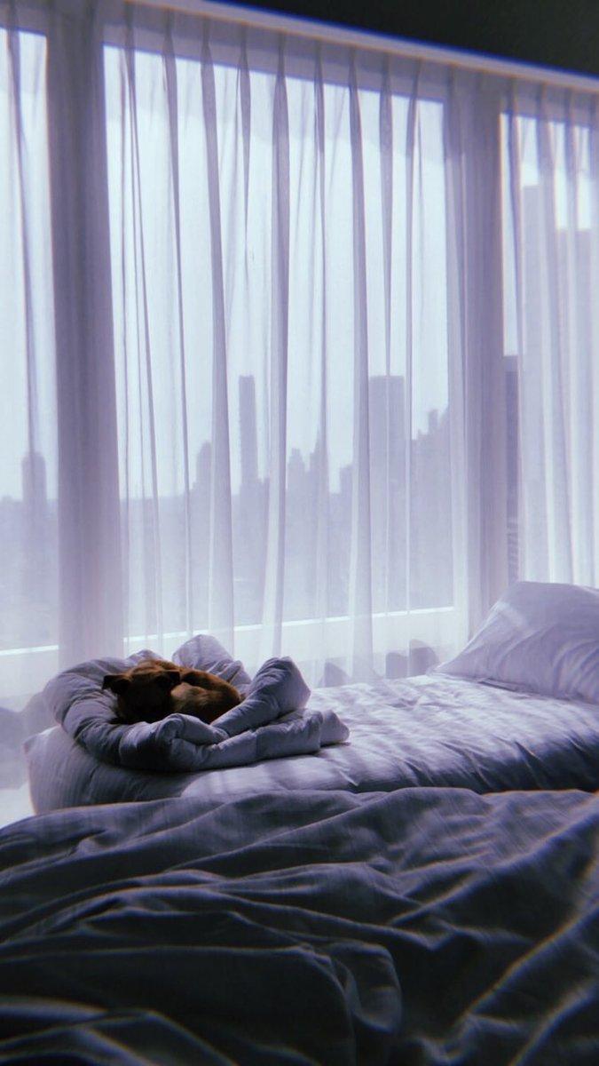 Ariana Grande Bedding : ariana, grande, bedding, Ariana, Grande, Today, Twitter:,