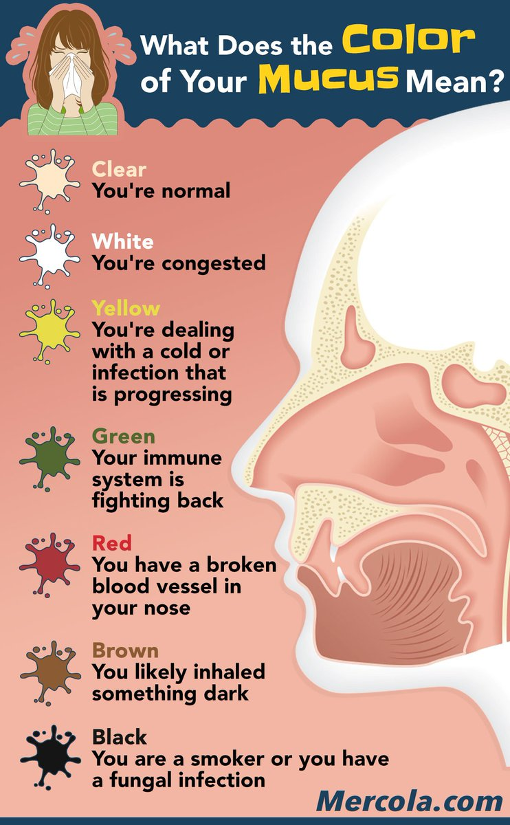 hight resolution of dr joseph mercola on twitter what does the color of your mucus mean