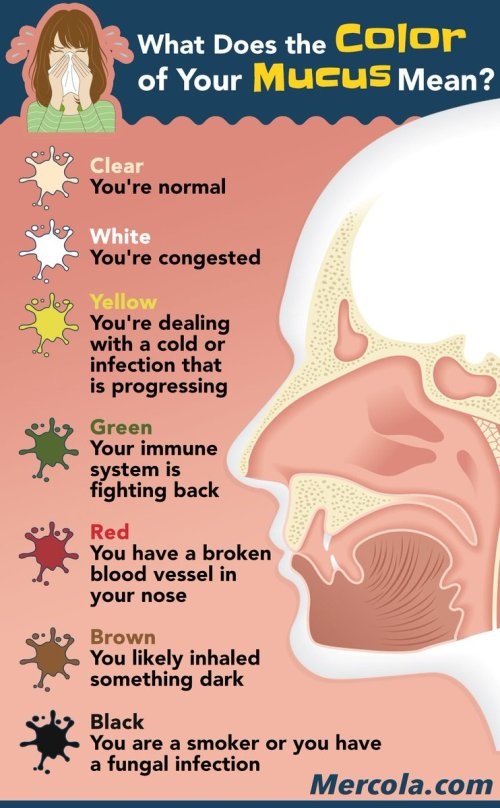 small resolution of dr joseph mercola on twitter what does the color of your mucus mean