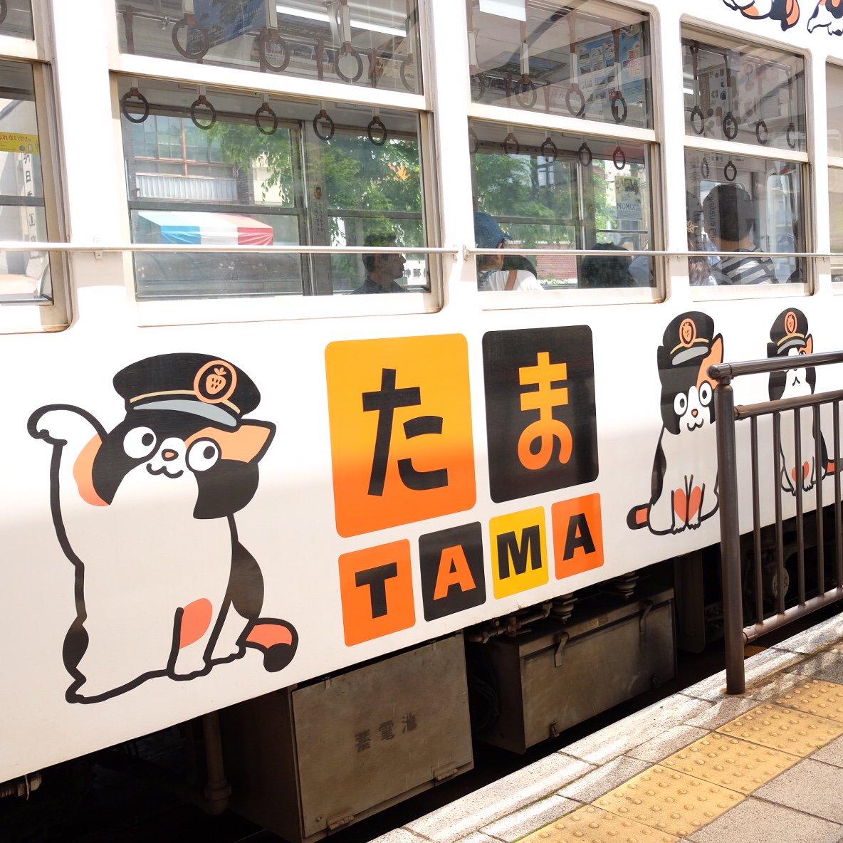 test ツイッターメディア - 無事帰ってますー。ライブ楽しかったー。ちなみに今日乗った乗り物、岡山の路面電車→JRマリンライナー→高松のことでん→高松空港リムジンバス→JAL飛行機→東京モノレール→山手線→中央線、よく乗ったなあ。写真は岡山の路面電車。 https://t.co/0DOo4nRYeF