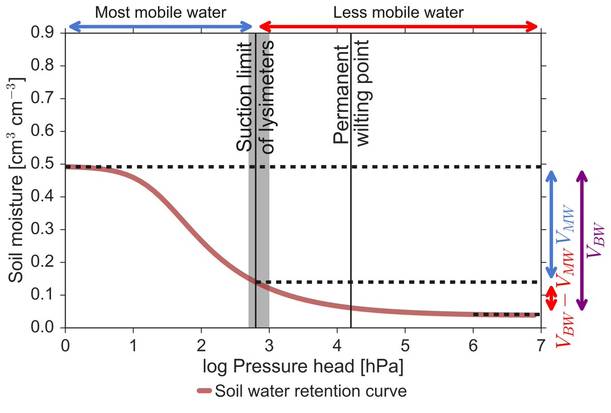 hight resolution of the fraction of mobile water accessible to lysimeter in bulk soil water is variable and can be low details in our manuscript in vzj