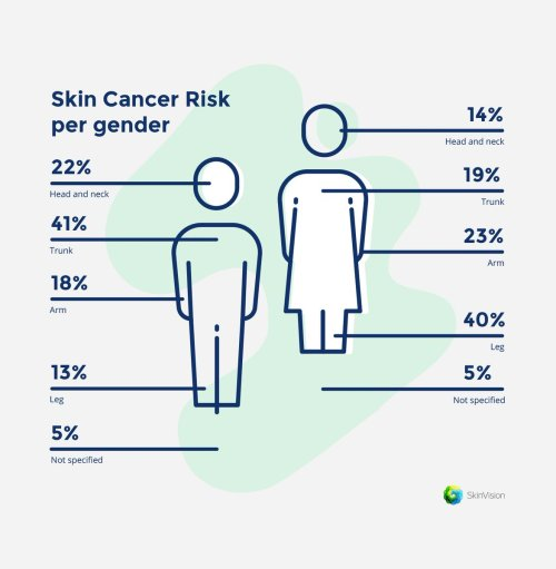 small resolution of skinvision on twitter when we talk about the areas on our body where skin cancer appears studies have shown that there are a few common places to point