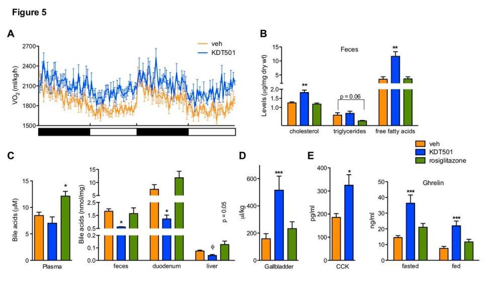 medium resolution of molecular metabolism