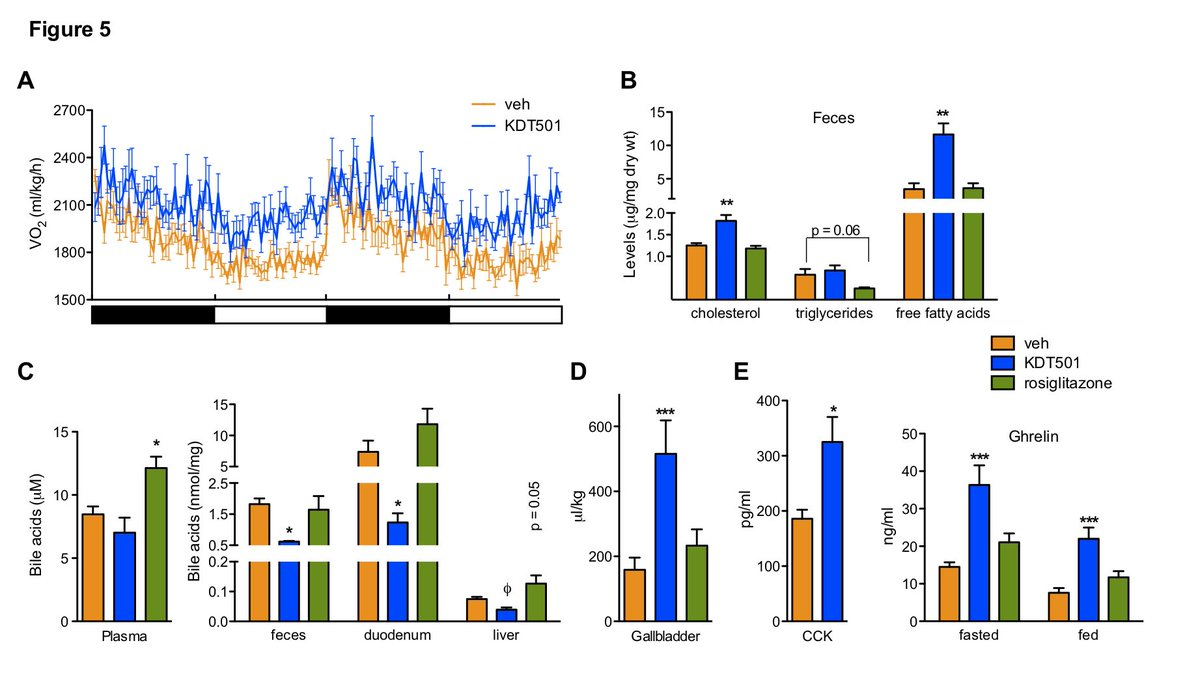 hight resolution of molecular metabolism