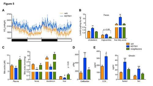 small resolution of molecular metabolism