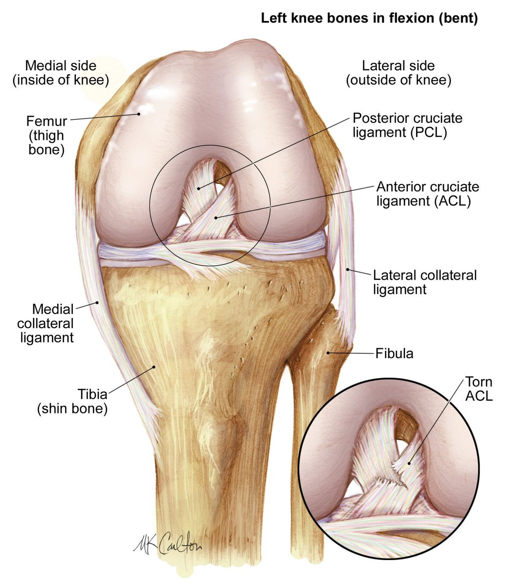hight resolution of stop sports injuries