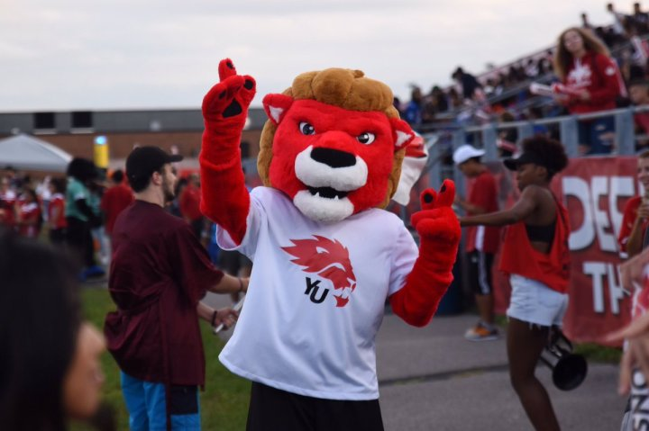 "York Lions on Twitter: ""Our mascot needs a name! Help name our new ..."