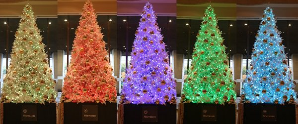 test ツイッターメディア - 【シェラトン都ホテル大阪】フォトジェニックなクリスマスツリーが登場! https://t.co/HmWY3syDUx https://t.co/KYqW7fvx4P