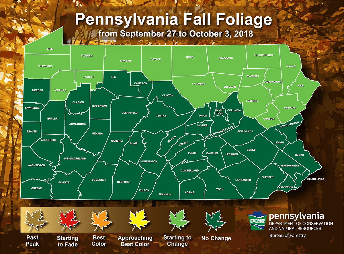 Pa Department Of Conservation Amp Natural Resources On