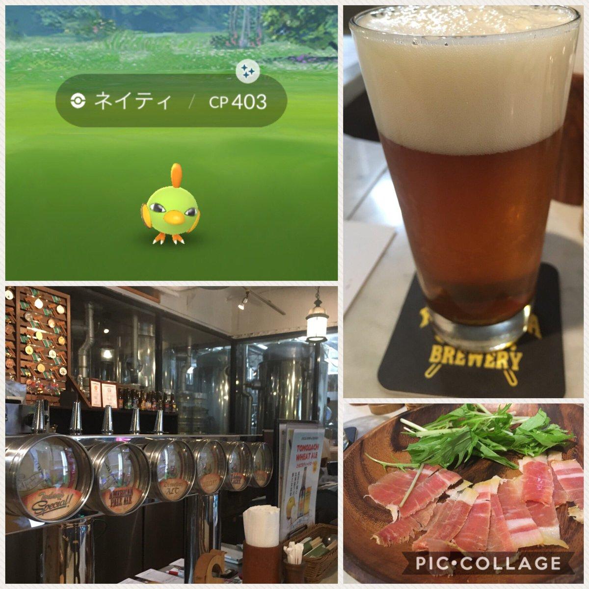 test ツイッターメディア - 昨日はみなとみらいにて半日ミュウツーまったり10戦。その中で一番良かったのは96のこの個体かな。醸造所がある横浜ビールが美味しいお店で飲んでからのレイド巡りだった笑 最後のエスパーデイは光沢のあるネイティさんゲットだった🐤 https://t.co/pxBAnjgdpV