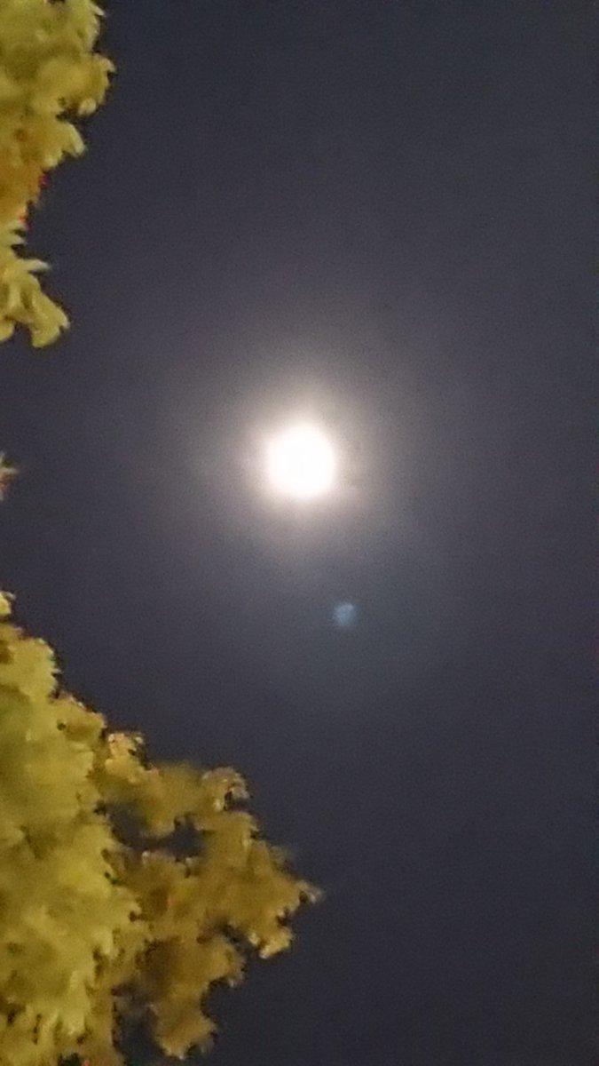 test ツイッターメディア - 何だかとってもお月様が綺麗な夜🌕ラジオの生放送の後🎤今宵は、ちょっと辛めのホットジンジャーを飲みながら、日曜日のイベントの準備しています😌 詳細は涙活オフィシャルHP https://t.co/Y4QrwaUAcB     @OsamuKuroda  #夕焼けヘッドライン #nack5 #ミュージックモア #MXテレビ https://t.co/uGNyHPPTEk
