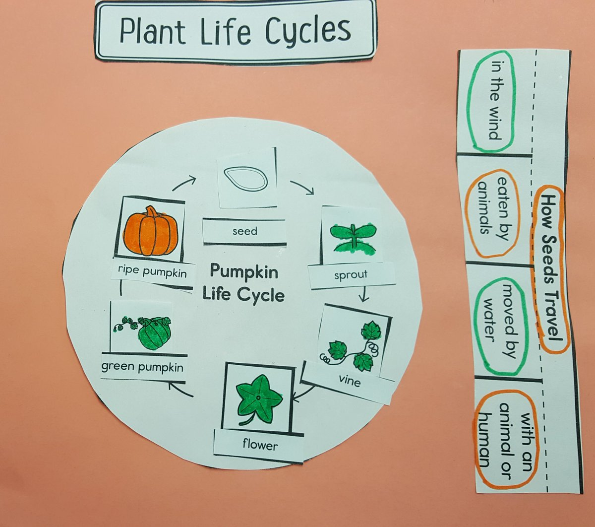 hight resolution of brad linko on twitter just in time for halloween pumpkin science 2lrocks dg58learns sciencerules