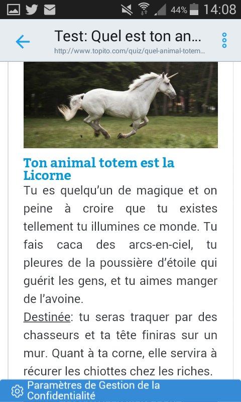 Quel Est Mon Animal Totem : animal, totem, Topito, Twitter:,