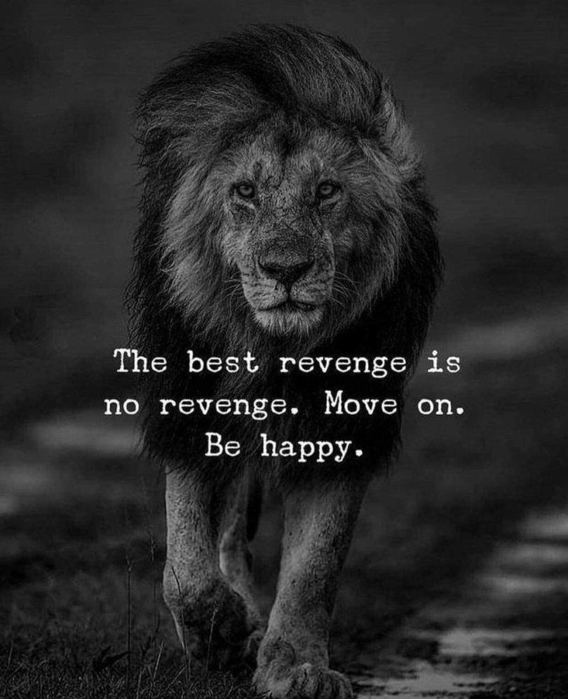 Image result for the best revenge is no revenge