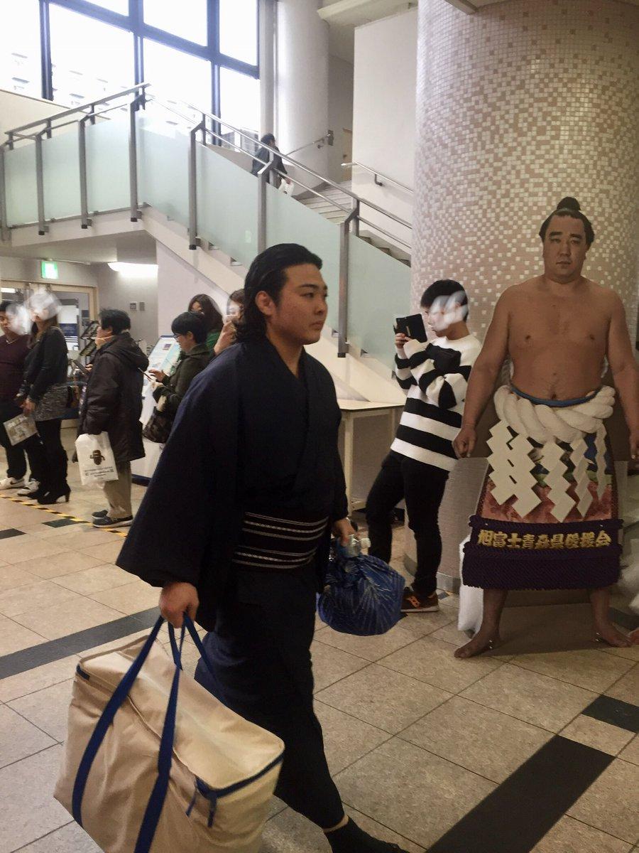 test ツイッターメディア - 去年の九州場所の炎鵬さんと 日馬富士パネル! https://t.co/jMOCJKhqWl