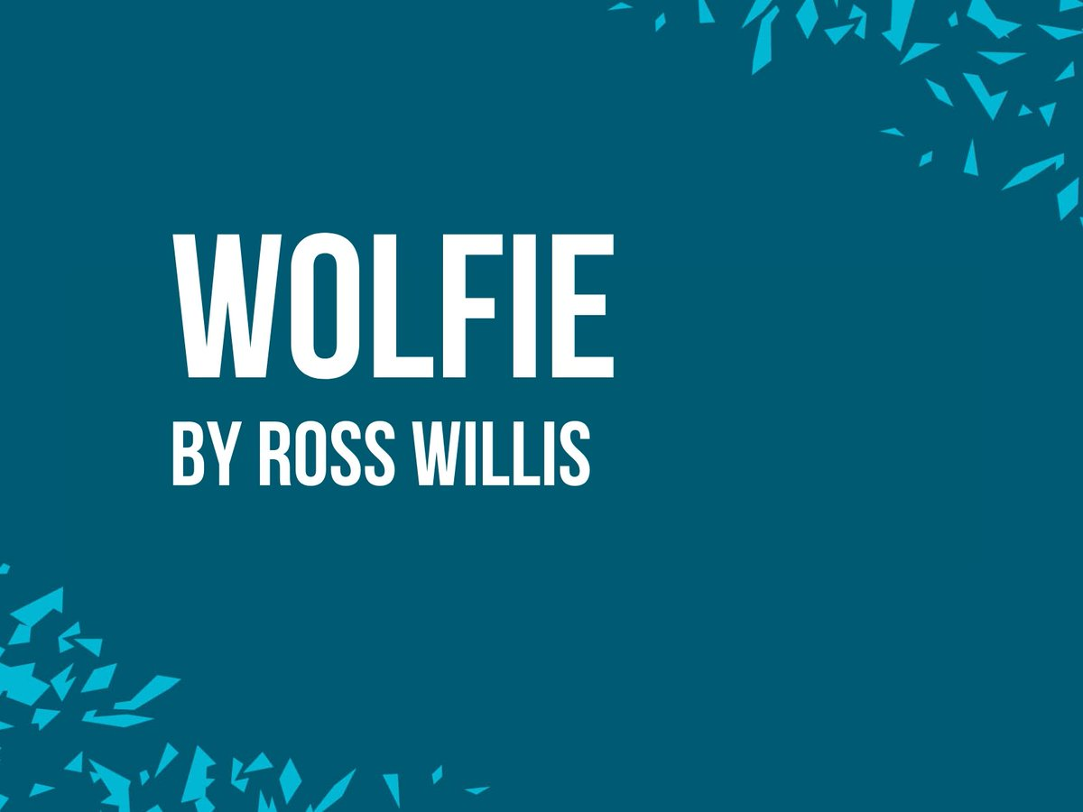Wolfie by Ross Willis