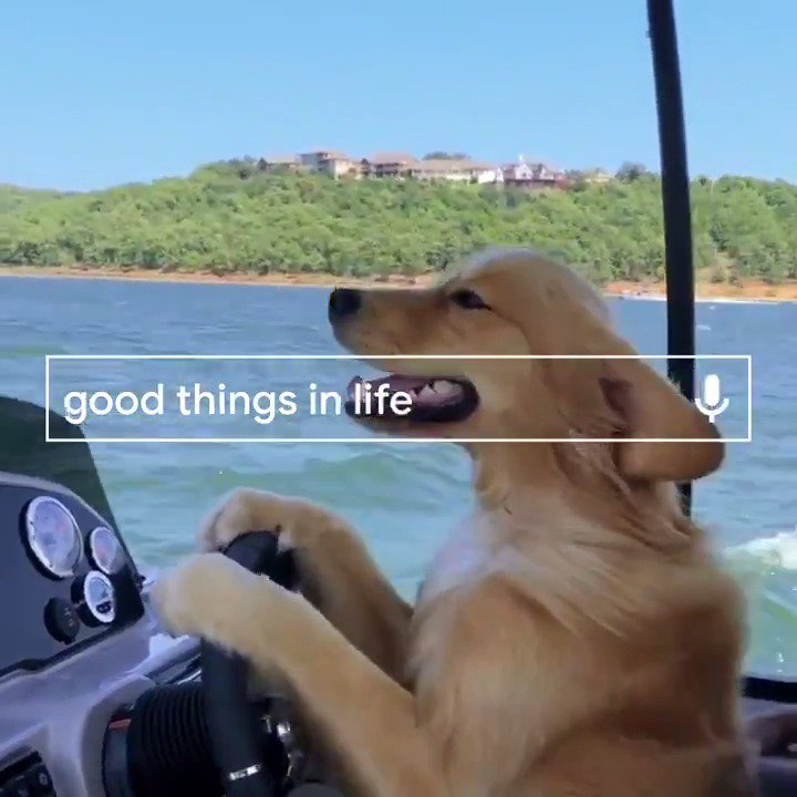 Image for the Tweet beginning: Good things are worth searching