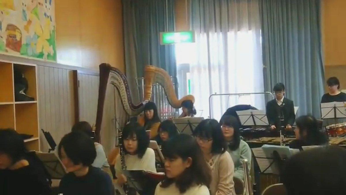 test ツイッターメディア - 今日は来週の定期演奏会に向けて1日練習でした。 ハープが2台並ぶと見応えがありますね👀  演奏会は茨城県民文化センターにて行われます。 1/20(日) 14時開演です。 団員一同、皆様のご来場を心よりお待ちしております。 https://t.co/iurdbc8JgA