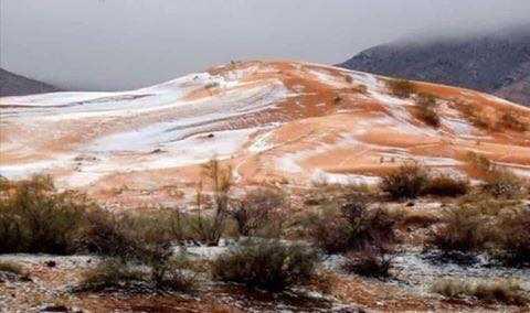 test ツイッターメディア - アフリカ サハラ砂漠に雪が舞う珍事!オレンジ色と白の競演 https://t.co/r6KkiB4t7W https://t.co/mbVmW3N6c0