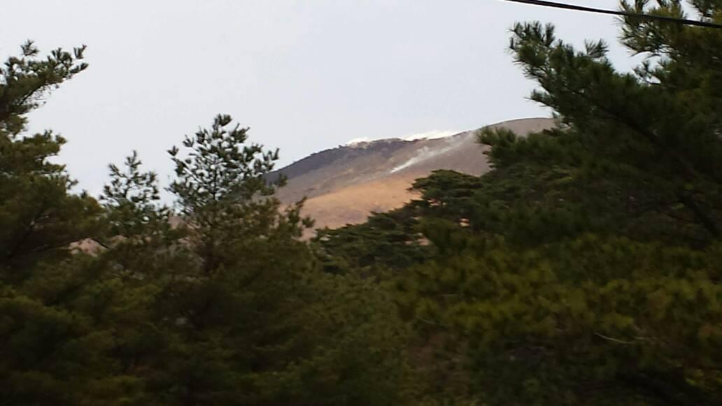 test ツイッターメディア - 2011、18年に噴火した新燃岳。先日も噴煙をあげていました。こうして肉眼で見る機会が来るなんて。2011年には思ってませんでした。東北の巡り合わせで私はここに立つことが出来ました。 https://t.co/jlv1k8HF80